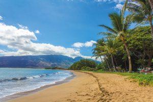 beach, landscape, hawaii